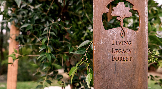 Frenchs Forest - Living Legacy